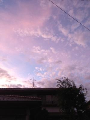 20120802-103931.jpg